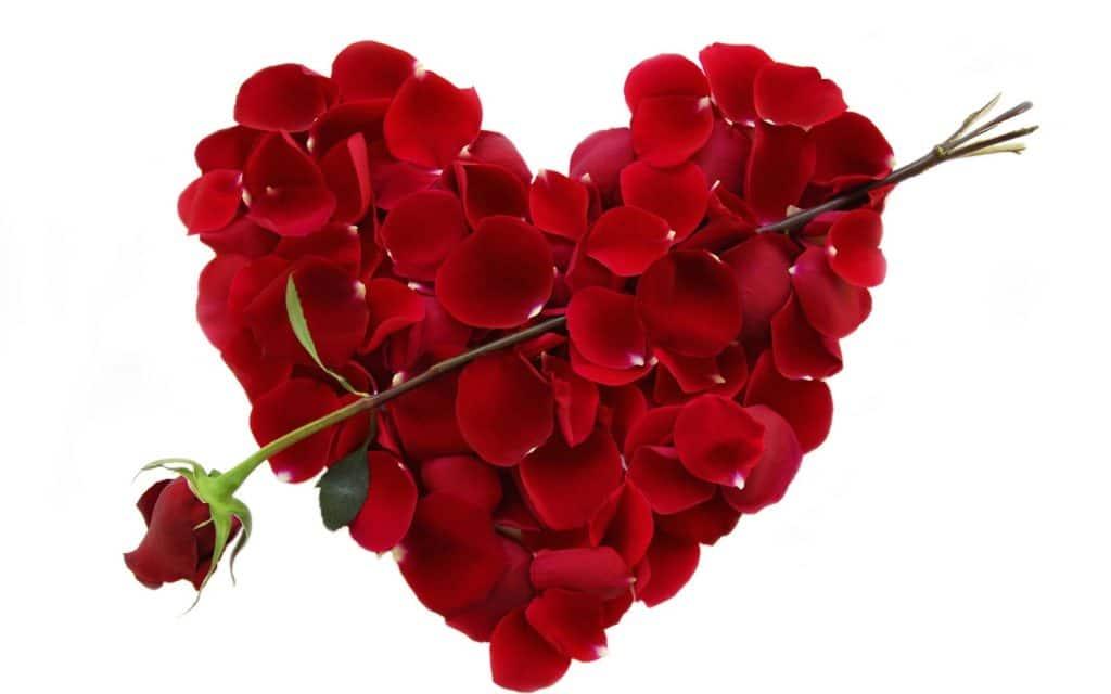 (Češtiny) 14.2.2017 Valentýn